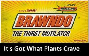 what plants crave